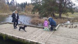 Liliana and Charlie visit the ducks .jpg